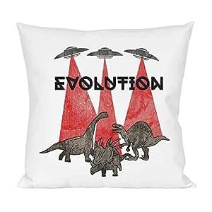 Evolution Pillow