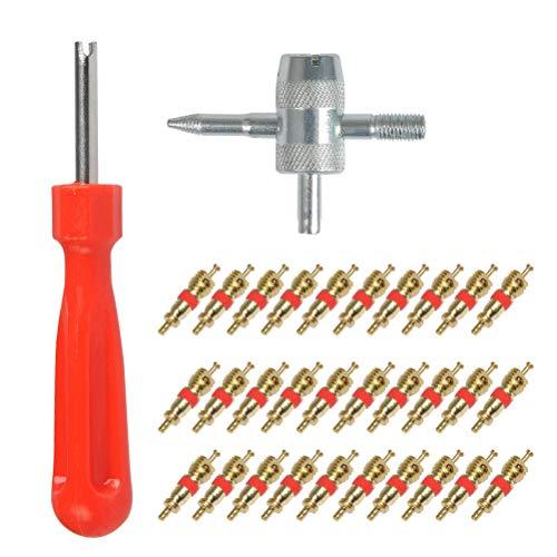 YANSHON 32pz Smontavalvole - Albero in acciaio chiave per valvole, Valvola Core Pneumatico, 4-1 Strumento di Riparazione in Acciaio - Svita Valvole Pneumatici (Solo per valvola americana)