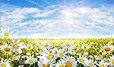 azutura Gänseblümchen-Blume u. Blauer Himmel Fototapete Blumen Tapete Wohnzimmer Haus Dekor Erhältlich in 8 Größen Extraklein Digital