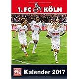 1. FC Köln 2017 - DuMont Fußballkalender 2017 - Fankalender - 29,7 x 42 cm