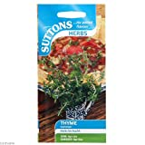 Suttons Seeds 165504 Thyme Common Herb Seed