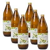 Bio Aloe Vera Saft 6 x 1l, naturtrüber Direktsaft, handfiletiert, aus kontrolliert biologischem Anbau, Abfüllung in Deutschland in dunkle Glasflaschen