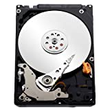 WD Blue 1TB Internal Hard Drive at amazon