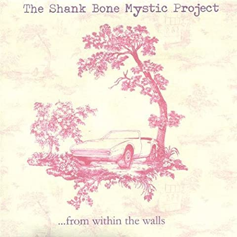 From Within the Walls by Shank Bone Mystic Project (2005-02-15)