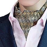 6c3a7d900f87 Zoylink Cravatta Da Uomo Cravat Business Cravatta Tessuta Sciarpa Ascot  Self Tie Per La Festa