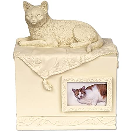 Angelstar Pet Box Urne Katze Geliebten Begleiter, Metall, Mehrfarbig