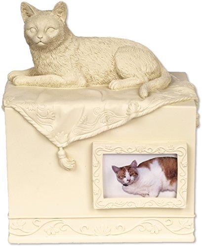 Angelstar Pet Box Urne Katze Geliebten Begleiter, Metall, Mehrfarbig - Urn Foto Katze