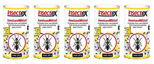 5x 250g Insectex Ameisen Mittel Ameisenmittel