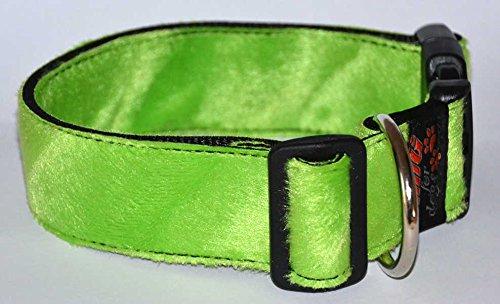 Fellhalsband, M, 32-53cm verstellbar, 2,5cm breit (neon green frog) (Leopard Green Neon)