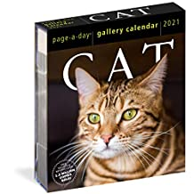 2021 Cat Page-A-Day Gallery Calendar