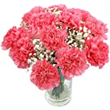 Clare Florist Perfectly Pretty Pink Carnations Fresh Flower Bouquet