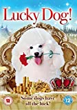 Lucky Dog [DVD] by Jiong He