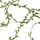 LULUNA 40 Meter Buchsgirlande Künstliche Blätter Blattband Girlande Grün Hanwerk Reben Band für Vintage Hochzeit Weihnachten Party Dekoration - 6