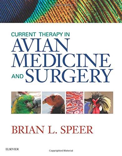 Current Therapy in Avian Medicine and Surgery, 1e por Brian Speer DVN DipECZM (Avian) DiplABVP (Avian)