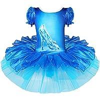 iEFiEL Disfraces de Fiesta Carnaval Princesa Infantil Vestido Maillot de Ballet Danza Tutú para Niña con Braguita