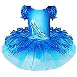 iEFiEL Disfraces de Princesa Infantil Vestido de Danza Tutú Ballet Fiesta para Niña con Braga Interior Azul 4-5 años
