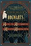 Historias breves de Hogwarts: Agallas, Adversidad y Aficiones Arriesgadas (Pottermore Presents - Español)