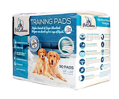 Tappetini Igienici Per Cani Assorbenti - 50pz Grandi 60x60 cm - Tappetino super assorbenti a 6 strati per proteggere pavimenti e moquette laminato - Anti-Scivolo Prova Di Perdite - Traverse Per Cani