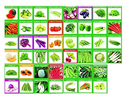 KRIWIN 46 Varieties (1985+ Seeds) Of Quality (Organic/Hybrid) Fruits & Vegetables Seed For Kitchen/Terrace/Poly House Garden With Instruction Booklet