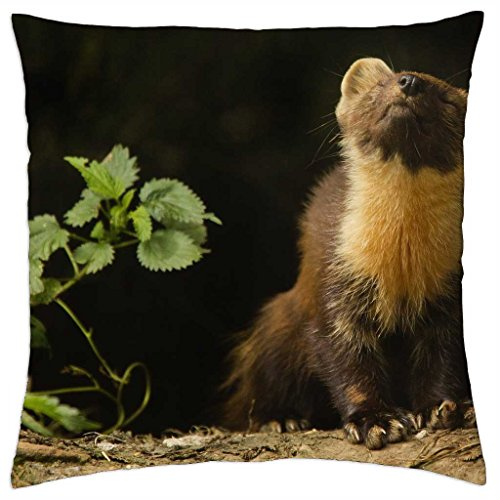 small-animals-frette-animal-throw-pillow-cover-case-18-x-18