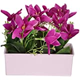 Pindia Artificial Purple Flower Plant with Pot for Home and Office Decor (17x7x15, cms)