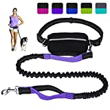 LANNEY Hands Free Dog Leash for Running Walking Training Hiking, Dual-Handle Shock Absorbing