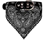 Kathy Lee's SHOP Einstellbare Hundehalsband mit Tuch für Hunde und Katze (S, black)
