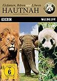 Hautnah - Elefanten,Bären und Löwen
