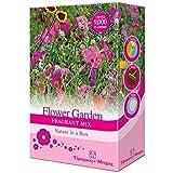 Gemischte Garten Blume Streuung Samen Bauen Sie Ihr Eigenes an Staude & Annuel Blumen für Häuschen, Wald & Parfümiert Gärten von Thompson & Morgan - Blumengarten Duft Gemischte Streuung Samen
