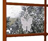 klassisches Fensterbild PLAUENER SPITZE ® Frühling SOMMER Schmetterling rohweiß Blüten