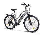Fitifito CT28 Zoll Elektrofahrrad Citybike E-Bike Pedelec, 36V 250W Heckmotor, 16Ah 576Wh LG Cells Lithium-Ionen USB 7 Gang Shimano Schaltung (grau)