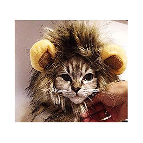 CCAT Halloween Pet Lion Mähne Kostüm Welpe und Katze Löwe Perücke Haustier Hund Hut Katze Löwe Kopfbedeckung Haustier Perücke Cute Pet Hat -
