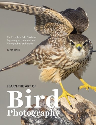 Learn the Art of Bird Photography: The Complete Field Guide for Beginning and Intermediate Photographers and Birders (Smith Art Photography)