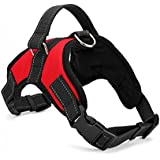 PetsUp Cool Comfort Oxford Cloth Vest Harness for Dogs (Medium, Red)