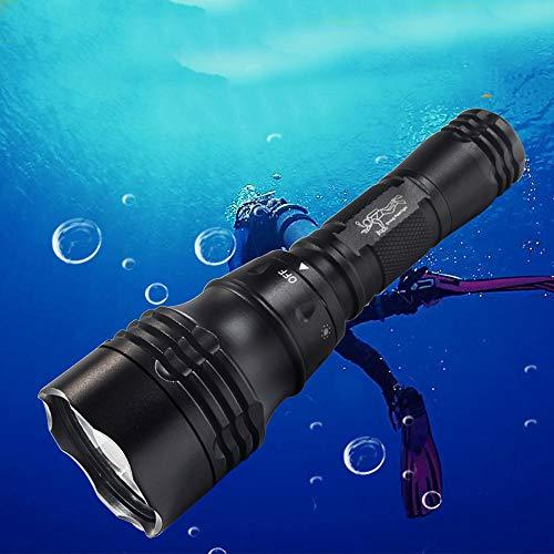 Heligen Buceo Linterna, 240 Lumens LED Antorcha de Buceo, IPX-7 Impermeable Recargable Linterna de Submarinismo, 200 Metros Luces Sumergibles con 1x 18650 Batería