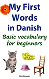 My First Words in Danish: Basic vocabulary for beginners (Learn Danish Book 1) (English Edition)
