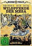 Wildpferde der Mesa (Wild Horse Mesa) (1925) - Der große Stummfilm-Klassiker