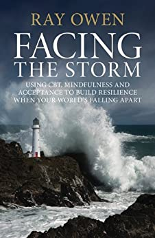 Facing the Storm: Using CBT, Mindfulness and Acceptance to Build Resilience When Your World's Falling Apart par [Owen, Ray]