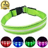 MASBRILL Leuchthalsband für Hunde Aufladbar LED Hundehalsband 100% Wasserdicht Blinkende Lichter mit USB (XS, 35X2cm, Grün)