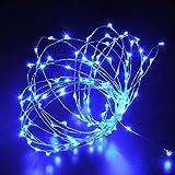 lederTEK 3m 30 LED Luce del Filo di Rame con Batteria per L'uso in Temi di Decorazione nella Struttura ad Albero di Natale o Evidenziare un Decorativo Figura (Blu)