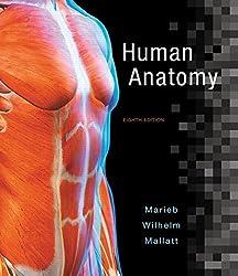 Human Anatomy (8th Edition) by Elaine N. Marieb (2016-01-17)