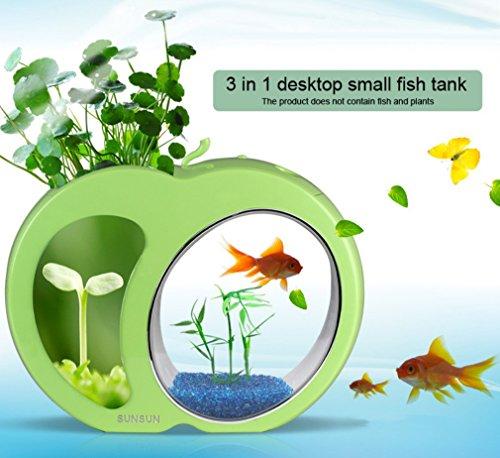 Mini Oficina Acuario LED Fish Tank Funcional Forma