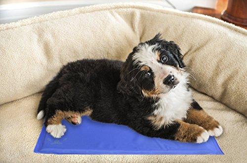 Tappeto Morbido Per Cani : Lauva dog cool mat cani tappetino di raffreddamento gel pads pet