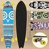 "Physionics Skateboard | 40"" (101cm), Kugellager: ABEC-9, Designwahl | Longboard, Retro-Board, Mini Cruiser, Cruiser Board, Komplettboard - Ethno Owl"