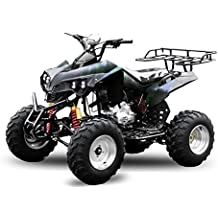 "AKP Warrior 250cc 10"" Offroad 4-Gang + Rückwärtsgang ATV Quad Bike"