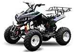 "AKP Warrior 250cc 10"" Offroad 4-Gang + Rückwärtsgang ATV Quad Bike (Orange)"