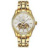 BINLUN Herren Analog Automatik Uhr mit Edelstahl Vergoldet Armband Skelett FBL0048G-GGW-B