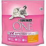 Purina One Chat Junior Croquettes pour chaton Poulet & Céréales complètes 1,5 kg - Lot de 6 (9 kg)
