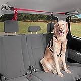 LOHUA Haustier-Fahrzeug-Sicherheitsgurt - Sichern Sie Ihr Haustier beim Fahren, freie Größe