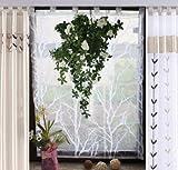 dynamic24 Raffrollo 140x120 Fertigdeko Fenster Voile Rollo Faltrollo Gardine Plissee weiß